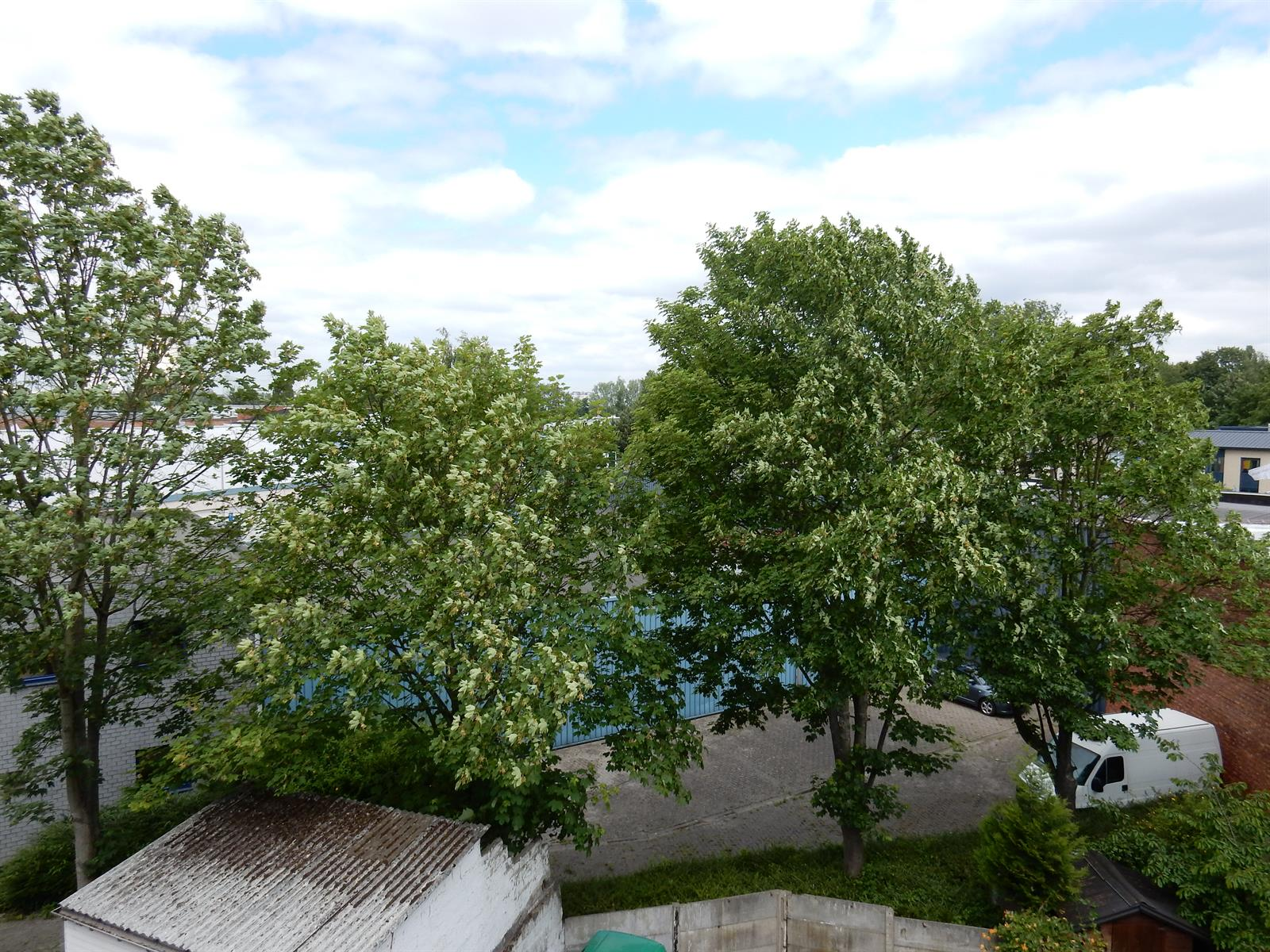Appartement - Forest - #3956499-7